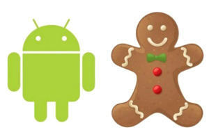 froyo-gingerbread.jpg